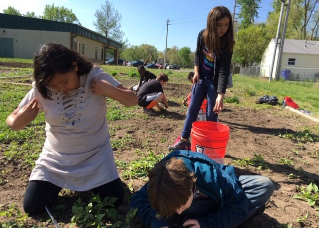 5th Grade students weeding the garden at the 12th Street Community Center